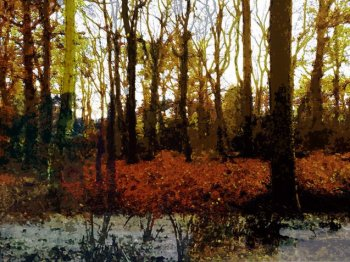 Autumn Woodland mixed media painting by Lesley Passey on sale at Vitreus Art, Northants gallery